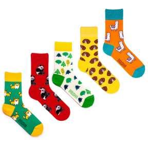 5 пар, набор цветных носков VG-7