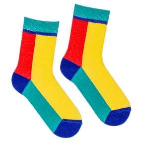Детские разноцветные носки Д9